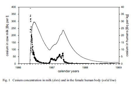 Cesium concentration in milk (dots) and in the female human body (solid line) after Chernobyl (Alfred Kerblein)